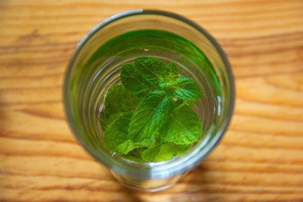 Ingredientes para saborizar el agua menta