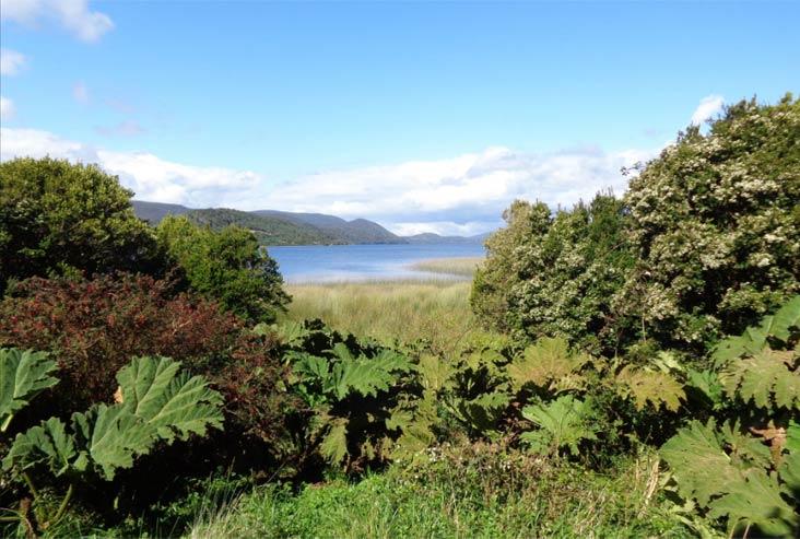 Parques nacionales de Chile Chiloé